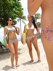 Amazing sexy teenie bikini babes masturbate and strip at the beach shower then get fucked hard in these cock sucking stall fucking pics
