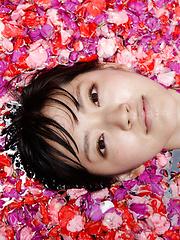 Airi Suzuki Asian in bath suit enjoys petals all over her body