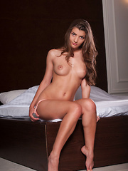 Ryanel A's athletic body with puffy breasts, well-toned torso, shaven labia, and svelte limbs showcased in a variety or subtly erotic, almost painterly poses.